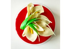 Современный шоколадный декор для начинающих кондитеров-2
