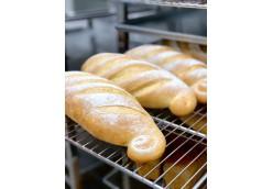 Технология современного хлебопекарного и кондитерского производства-0