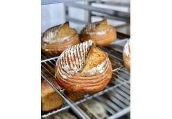Технология современного хлебопекарного и кондитерского производства-5