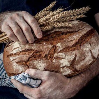 Технология современного хлебопекарного и кондитерского производства